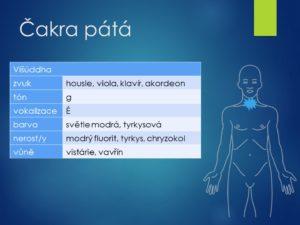 astma, dušnost, průdušky, plíce