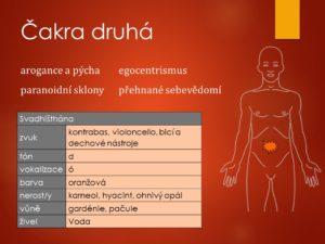 onemocnění, nemoci, zánět, ledvin, močové, ledvinové, kameny, kaménky, ledvinová kolika