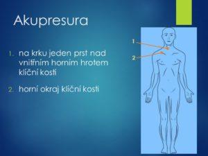 metabolismus, látková výměna, přeměna, čištění krve, očistná kůra