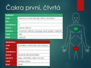 hypertenze, srdce, cévy, kornatění