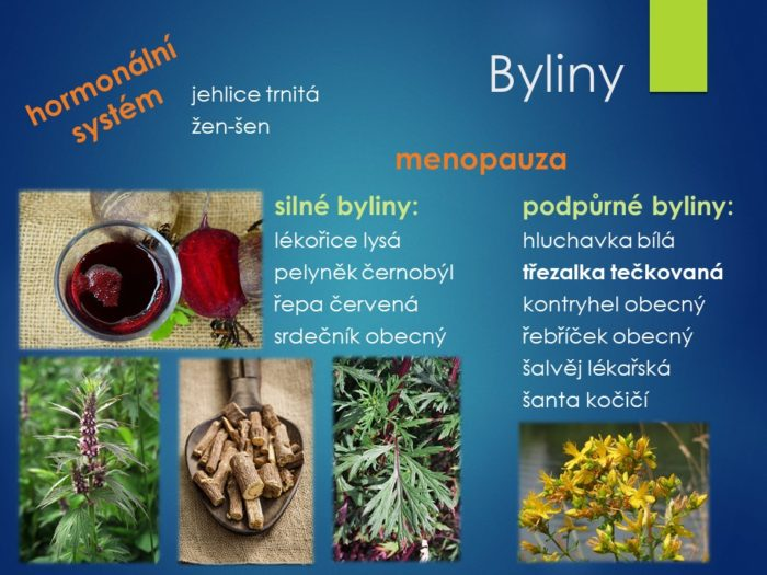 menopauza, zdraví, léčitelství, čínská, východní, alternativní, medicína, meditace, duchovní, léčivé, byliny, bylinky