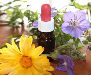 homeopatie, homeopatika, byliny, léčivé, zdraví, léčitelství, alternativní medicína