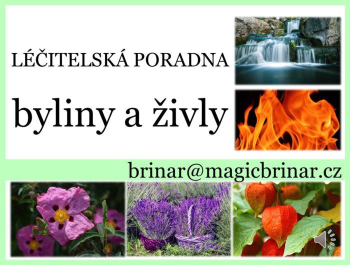 byliny a živly