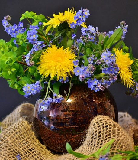 pampeliška, smetánka lékařská, rostliny v magii, magické rostliny