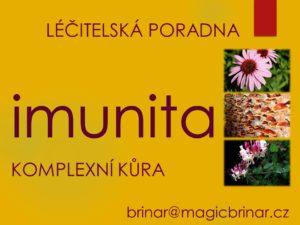imunita, zdraví, léčitelství, alternativní, čínská, východní, medicína, byliny, bylinky, houby