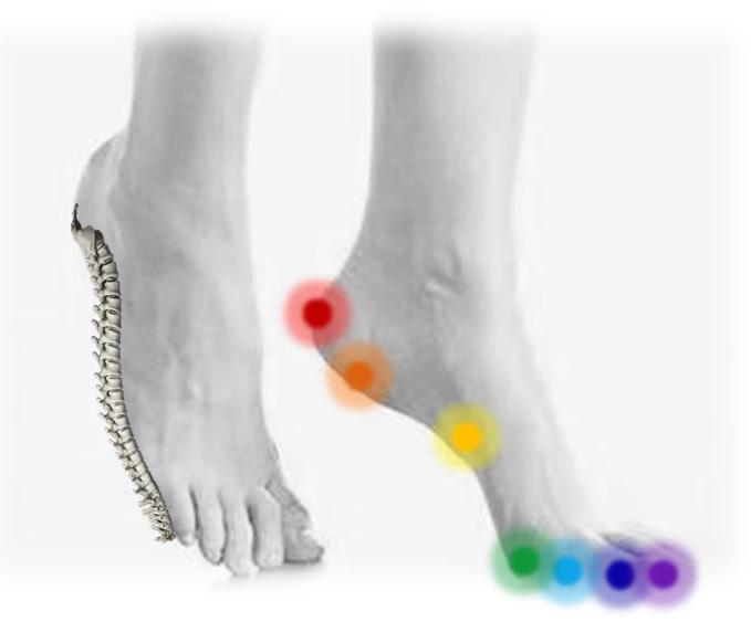 reflexní zóny, terapie, plochy, plošky, masáž chodidel