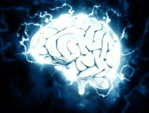 mozek, meditace, mozkové vlny alfa, alpha