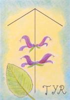 runa Teiwaz, Tyr, starodávné runy