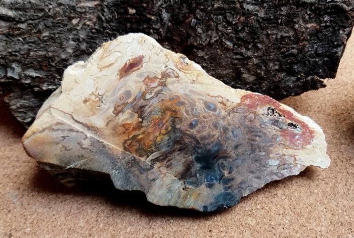 kámen, stone, mineral, nerost, nerosty, jaspis, jasper, palmové kořeny, palm roots, surový, raw
