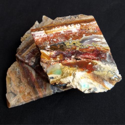 nerosty, mineral, kámen, stone, achát, agate, multicolor, fossil wood, zkamenělé dřevo, fossilized wood, agatized wood, slab, slice, minerální plátek