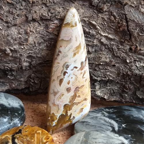 nerost, mineral, kámen, stone, kabošon, cabochon, jaspis, jasper, palm roots, palmové kořeny
