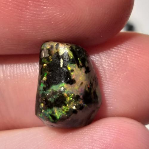 nerosty, mineral, kámen, stone, opál, opal, drahý opál, precious opal, černý opál, black opal, wood opal, dřevo opál, raw, surový